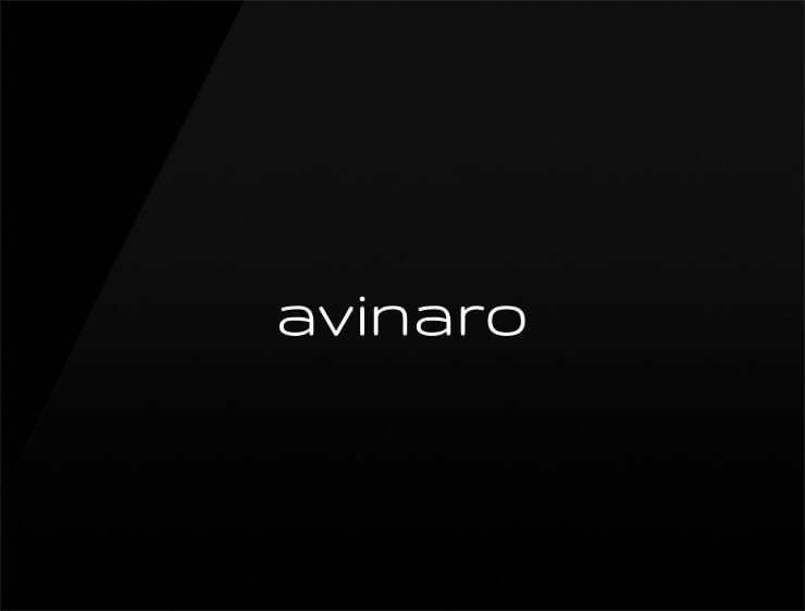 unique business name avinaro