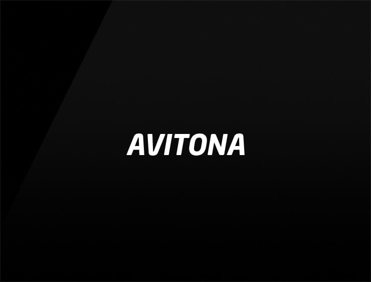 Modern and catchy name for businesses AVITONA