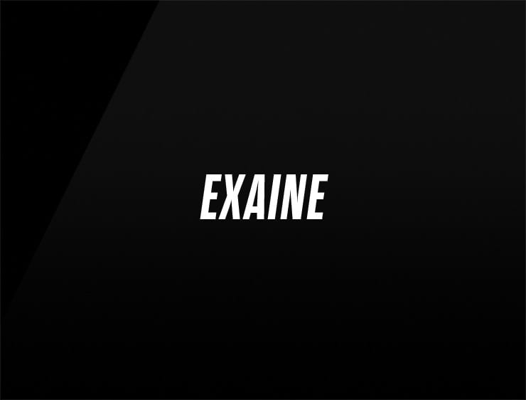 cool company name EXAINE