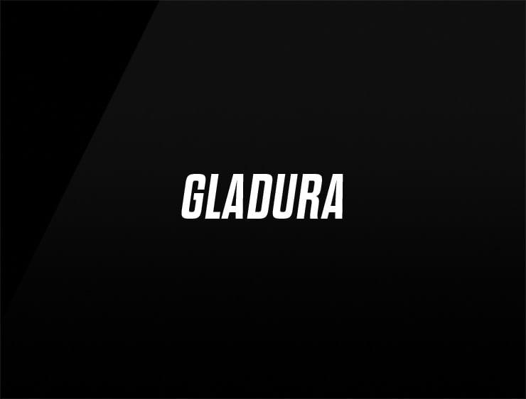 unique company names gladura