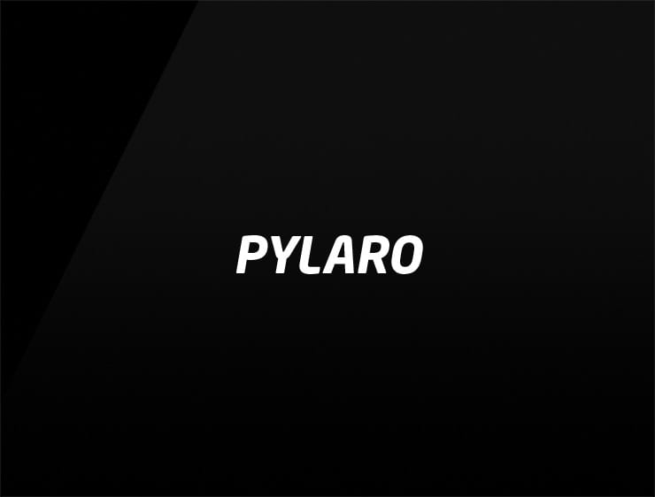 name for business pylaro