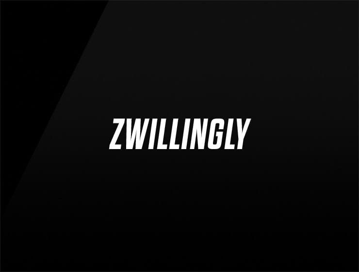 pick a business name zwillingly